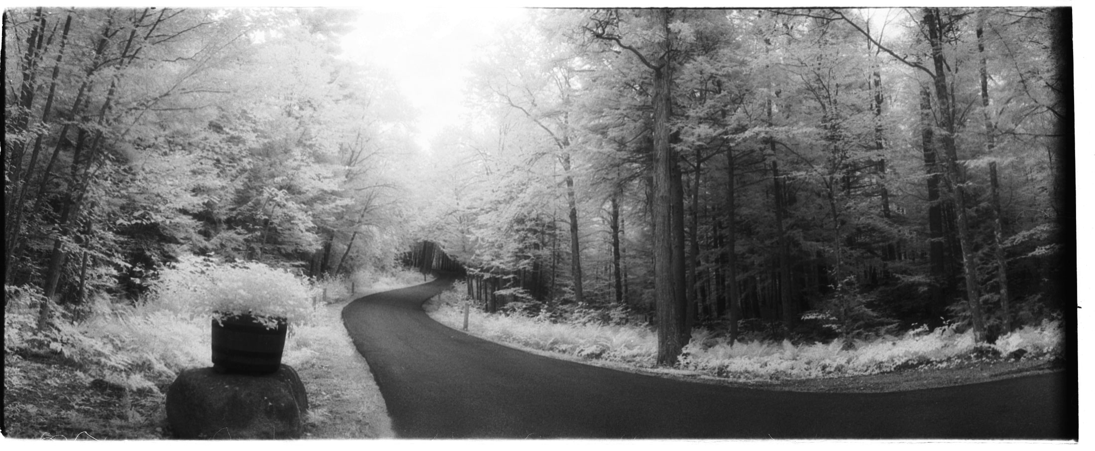 winter in toledo. infrared photography